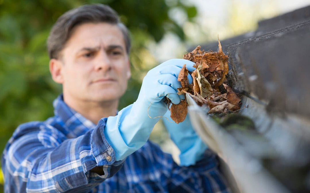 essential home maintenance services include gutter cleaning