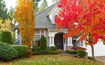 Update Your Landscaping for Fall